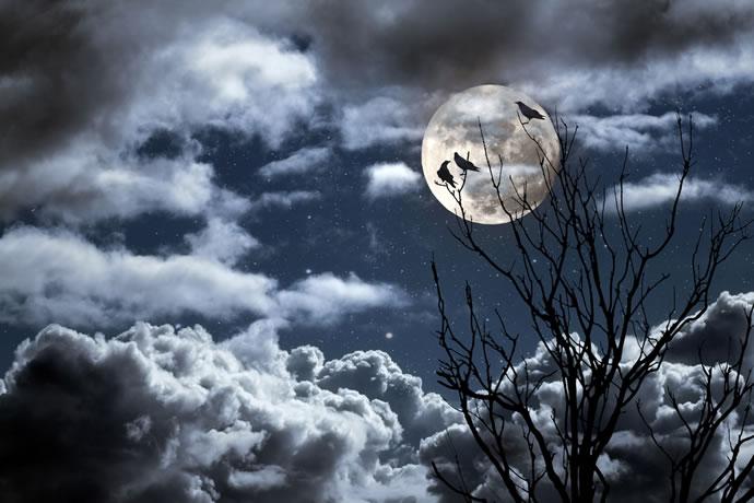 Fotos de lua cheia estrelas